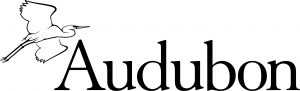 Audubon Gives Students the Reins in New Campus Chapter Program